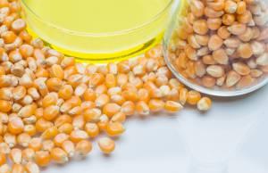 High fructose corn syrup, glucose, fructose, sucrose, Professor Wayne Potts, University Utah, toxic