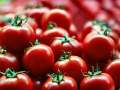 Lycopene, benefits, antioxidant, cardiovascular, mercury , cadmium , herbicides, pesticides, cancer, stem cells, vitamin A, Tetraterpene, Colourful Mediterranean diet, Rainbow Diet, Dichlorvos, DDVP, stroke risk, Chemo toxicity, pathogens, glutaminase, CYP2E1, p-nitrophenol hydroxylase, WNT-beta-catenin, Hedgehog, prostate cancer, pancreatic cancer